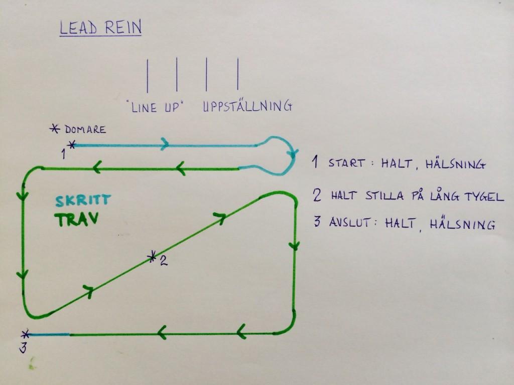 Lead Rein